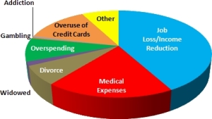 Reasons cited for bankruptcy filings